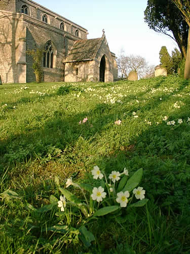 Churchyard, St Michael's