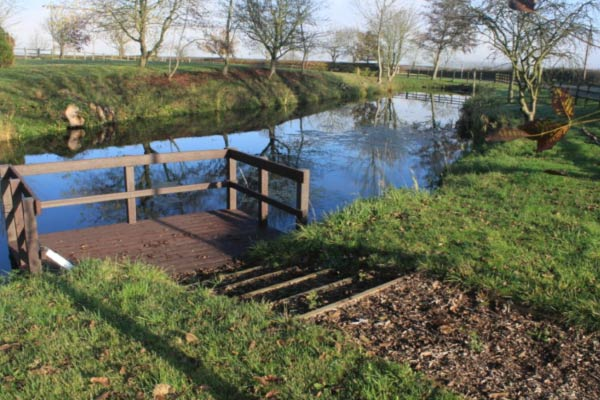 Pond dipping platform at Townsend Pond