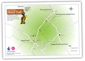 Great Gidding Newt Trail map