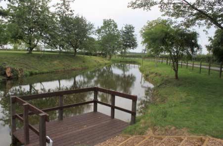 Townsend Pond after restoration