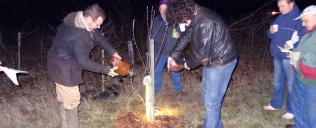 Wassail in the Jubilee Wood