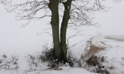 Gidding in snow, Great Gidding, winter