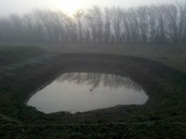 Foggy morning and the Jubilee pond. Photo: Michael Trolove