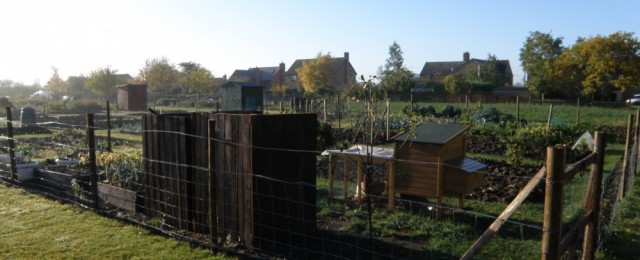How the latest allotments were created