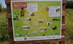 Newt trail signage