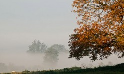 Morning mist, Little Gidding