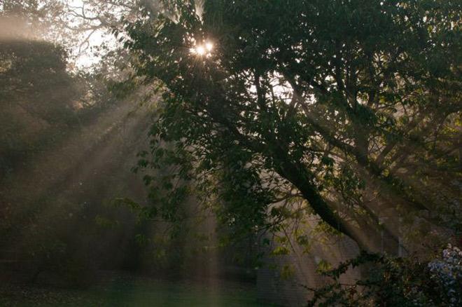 Sun and morning mist, Little Gidding