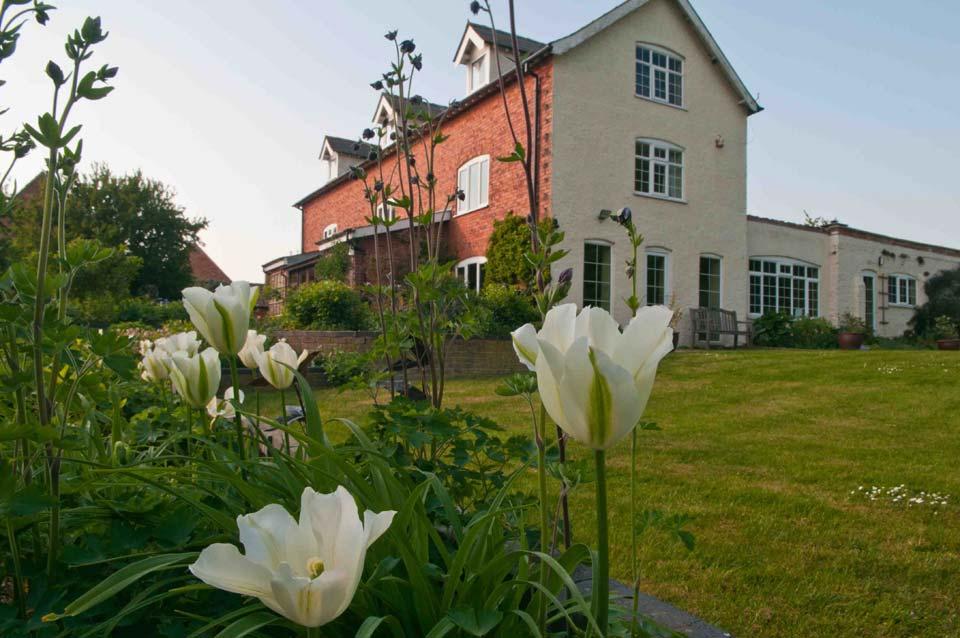 Tulips, Ferrar House, Little Gidding
