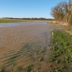 Flood water running out of the Alconbury Brook at TL 1195 8173
