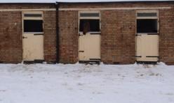 Three stable doors