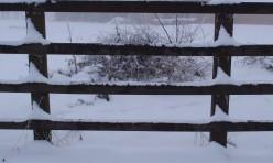 Snow pattern at Mill farm