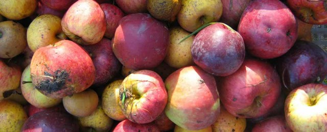 Wassail and Wiff Waff evening - January 9th