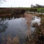 Chapel End Pond, Great Gidding
