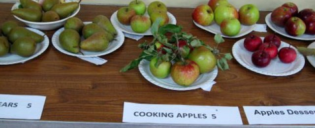 Gidding Produce Show 2014 - a growing success