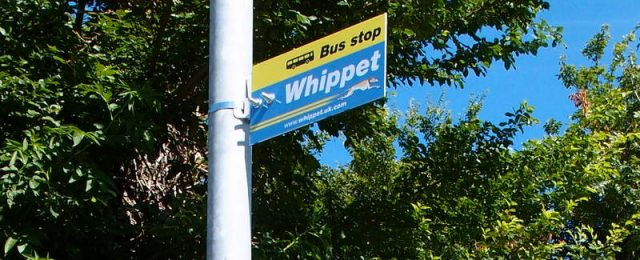 New bus service for Great Gidding ?