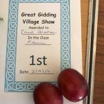 Great Gidding Village Show 2017