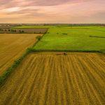 Farming in Great Gidding 2017