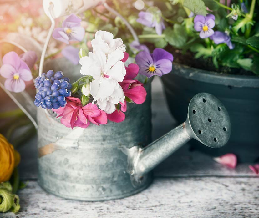 Do you have any unwanted garden-related items?