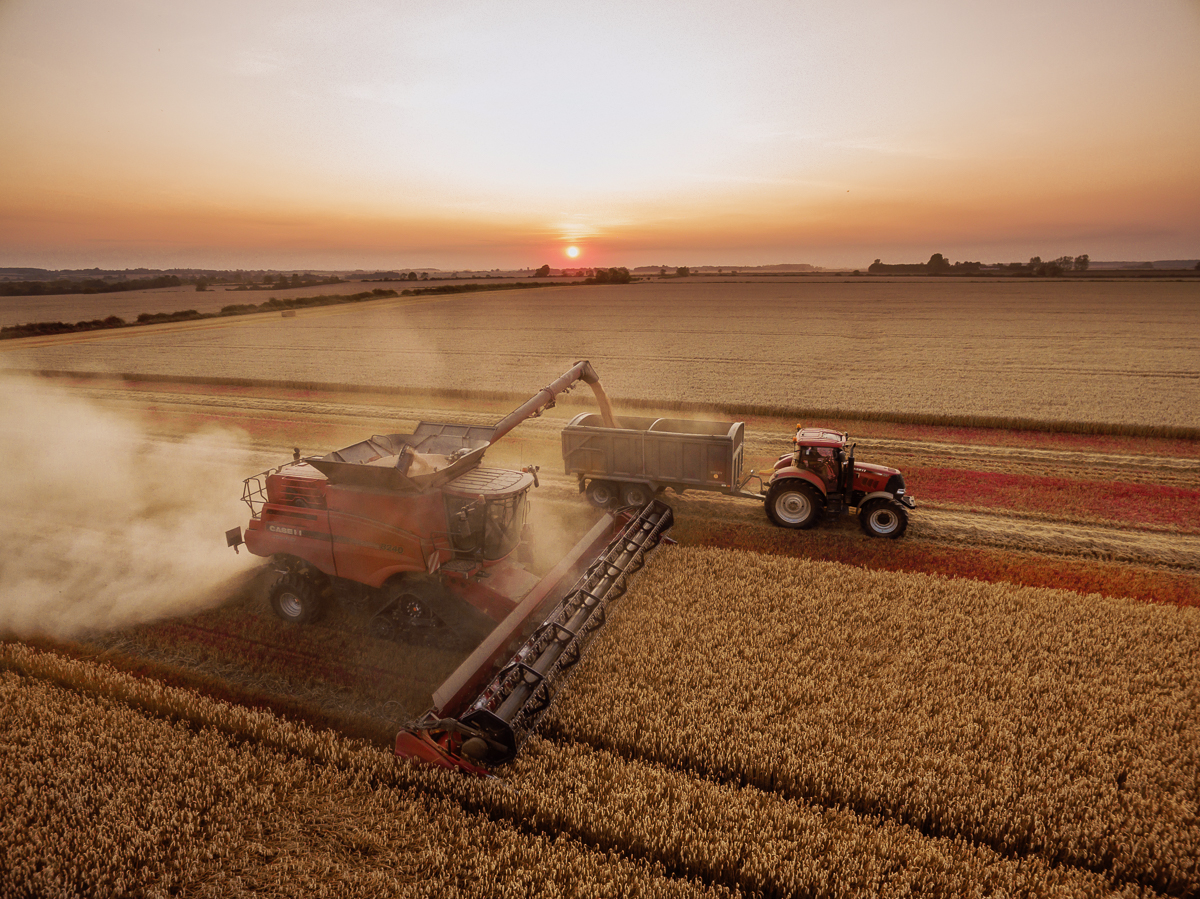 Aerial images of harvesting in Cambridgeshire for ongoing farming project.