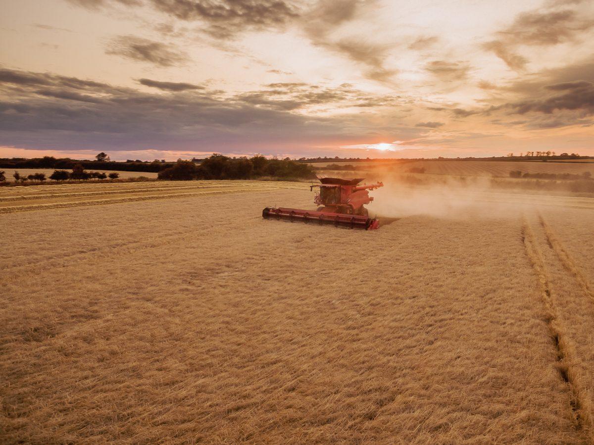 Harvesting in Great Gidding