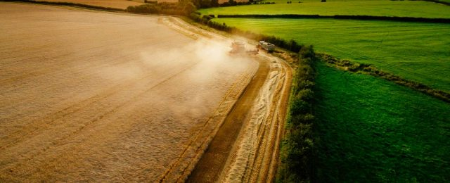 Recent photos of harvesting in Great Gidding
