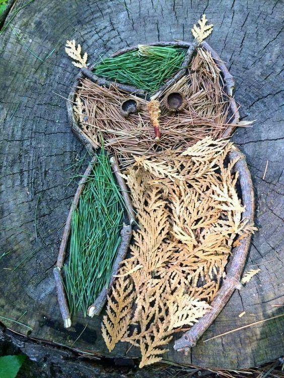 Art from Nature