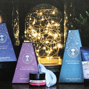 Gidding Christmas Cornucopia - Neals Yard gifts