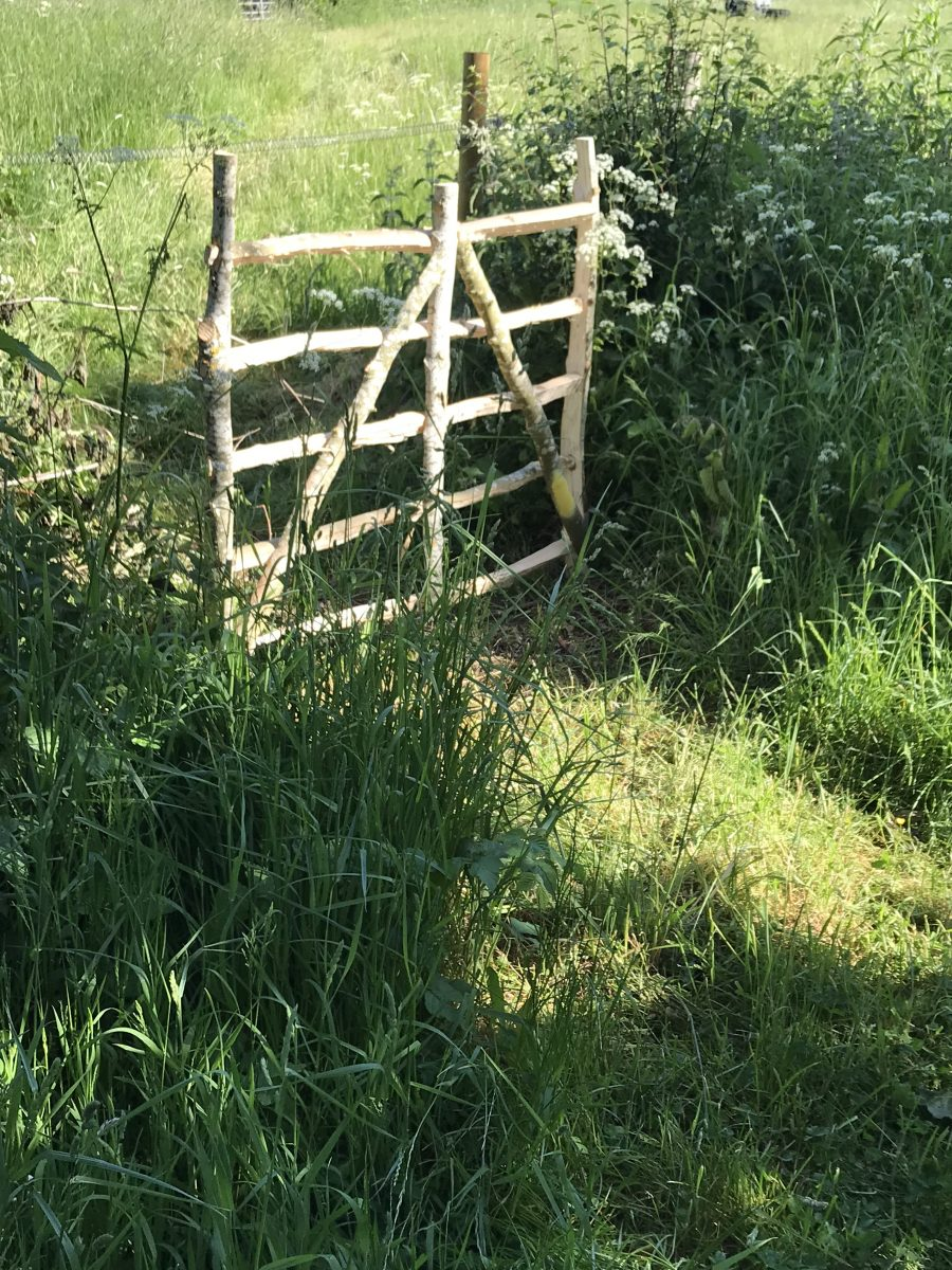 Ash hurdle in wood