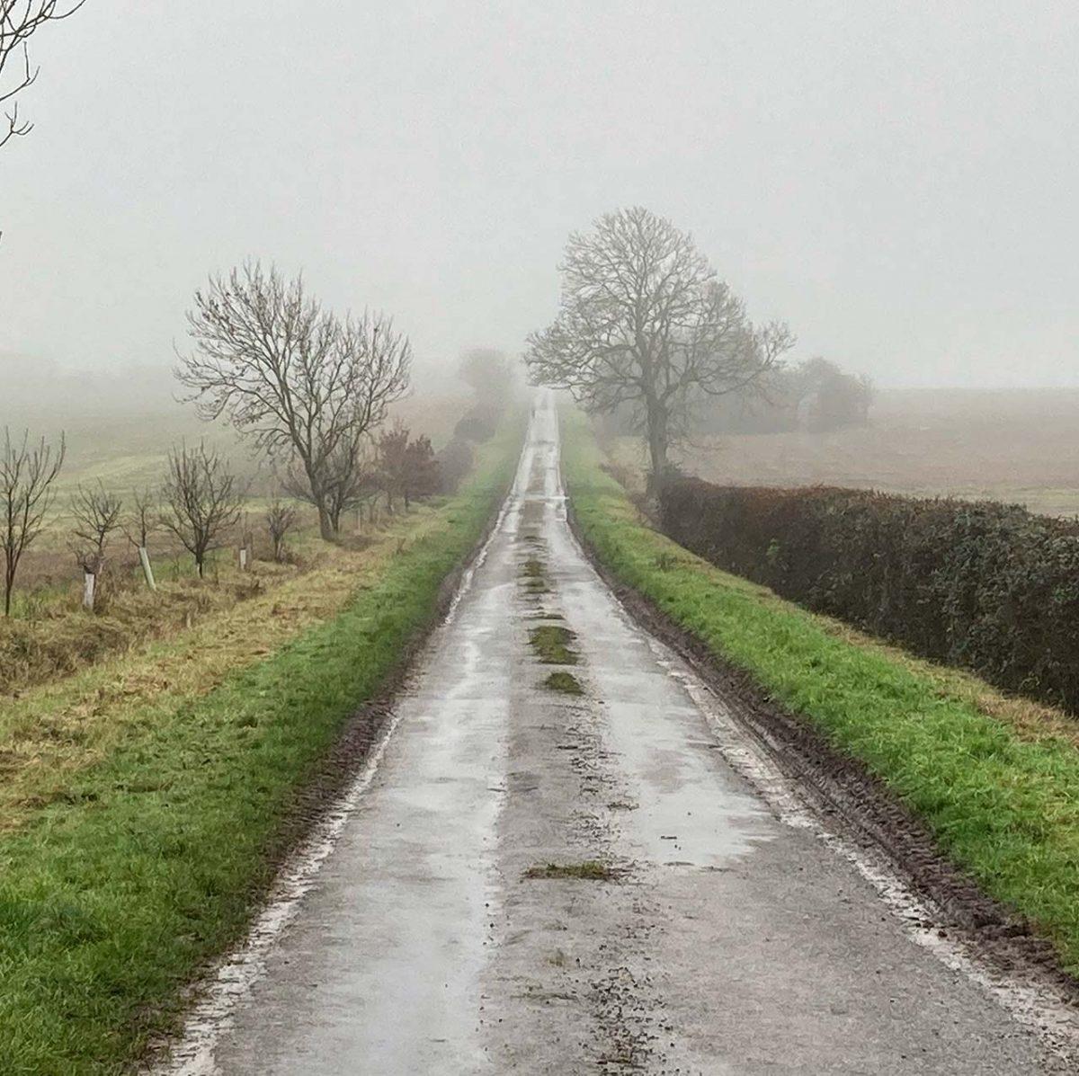 Bullock Road towards Aversley Wood Jan 21